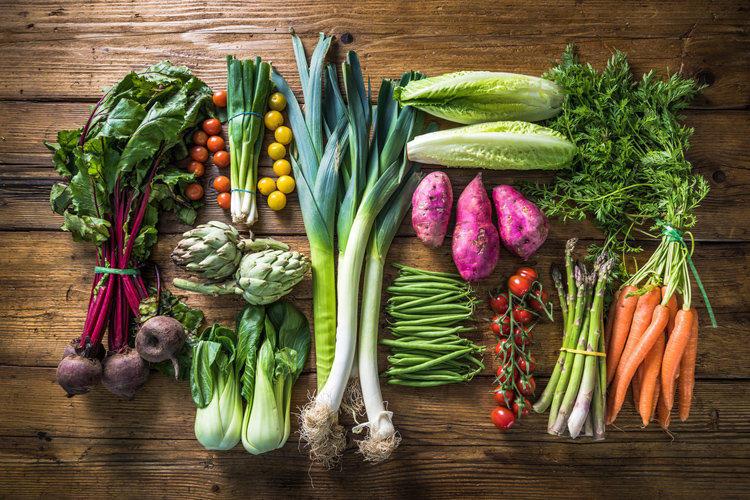 Вегетарианство. Виды и их отличия.